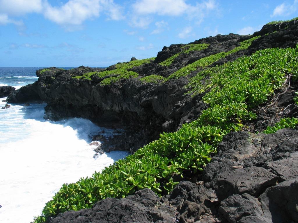 Kipahulu_coast_Haleakala_hawaii