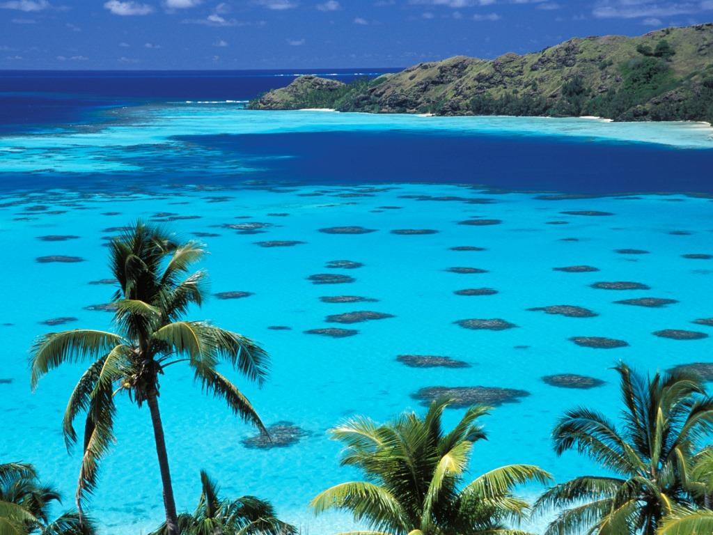 Best Island For Snorkeling In French Polynesia