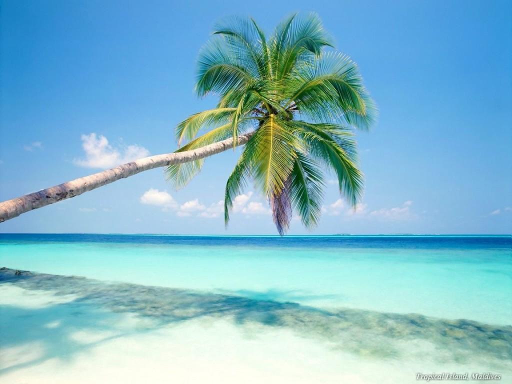 playas-playa-del-carmen