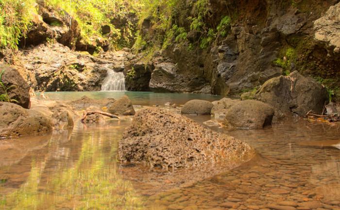 manana-nature