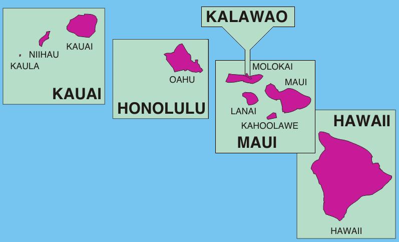 Image Source: wikipedia.org