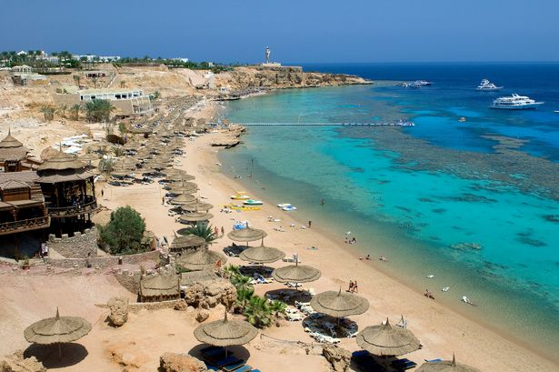 Sharm el Sheikh, Ras Umm Sid Beach-1412390