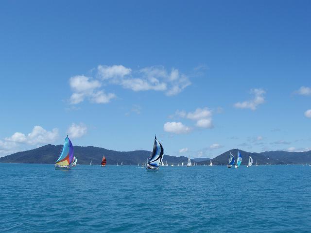 spinnaker_sailing