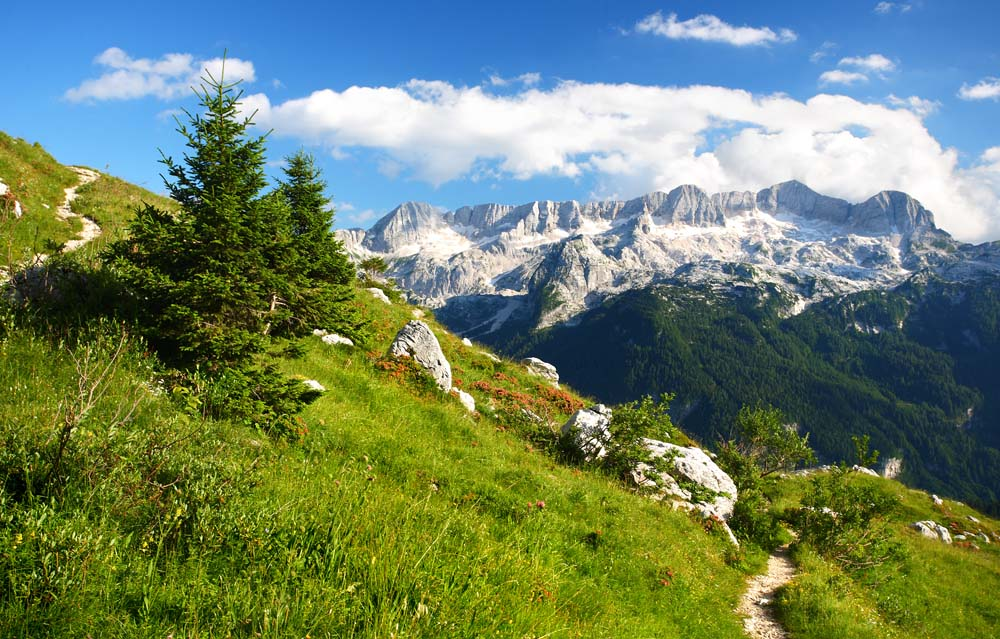 french-alps-small