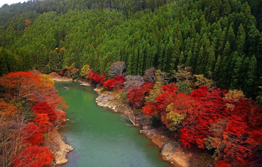 Arashiyama,-(Kyoto,-Japan)