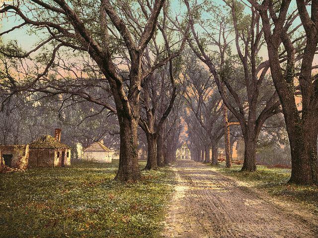 1024px-The_Hermitage_plantation,_Savannah,_Georgia,_1900
