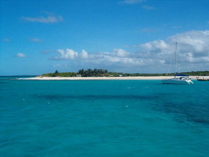 Anguilla_Prickly-Pear