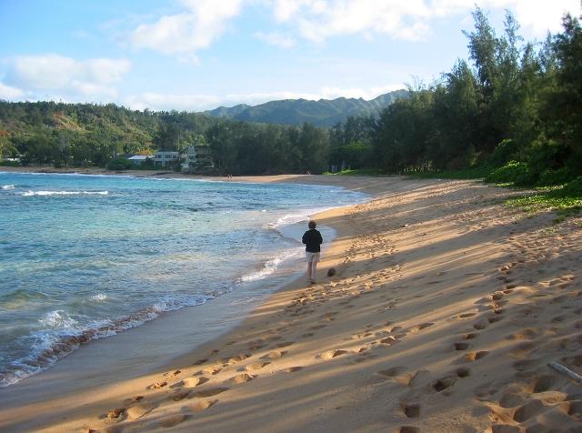Hawaii-Kauai-Moloaa-beach