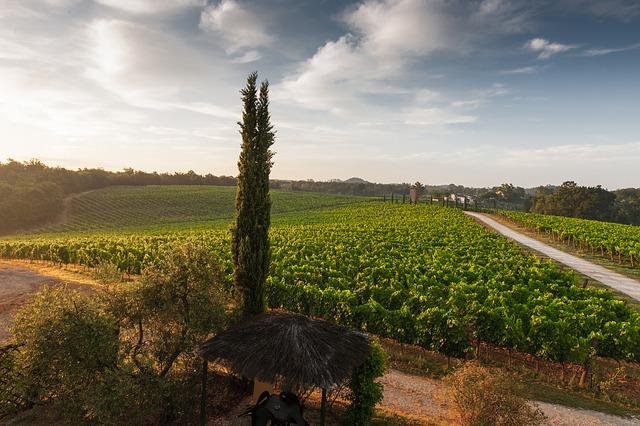 tuscany-428036_640