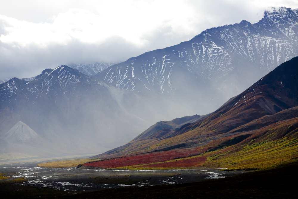 Alaska-tundra