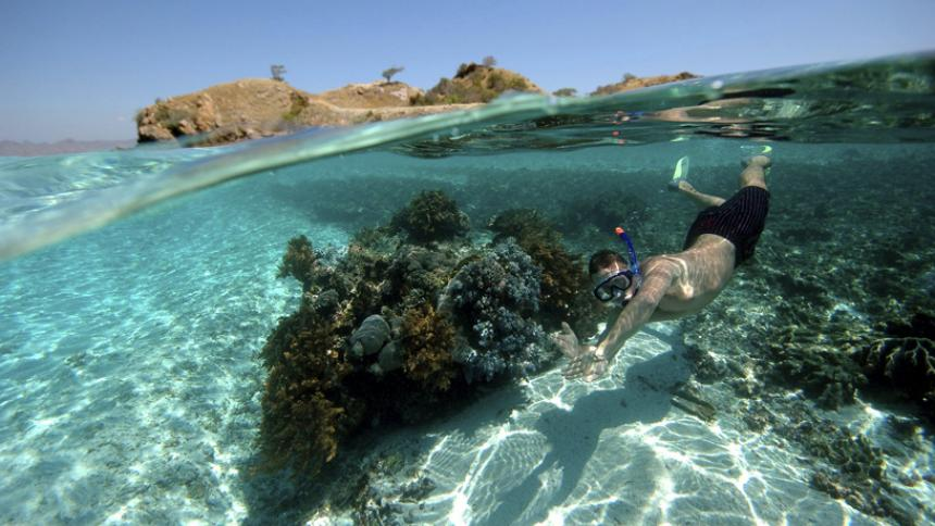 Snorkeling-in-Middle-Caicos