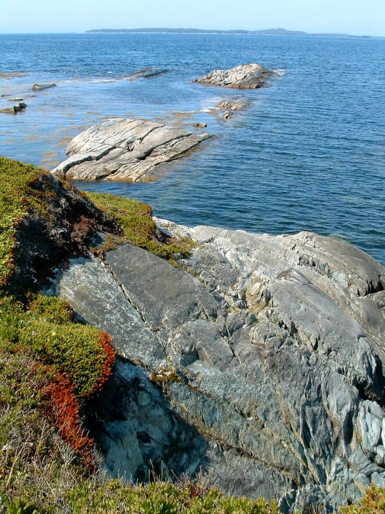 Taylor_Head_Provincial_Park,_Eastern_Shore,_Nova_Scotia,_