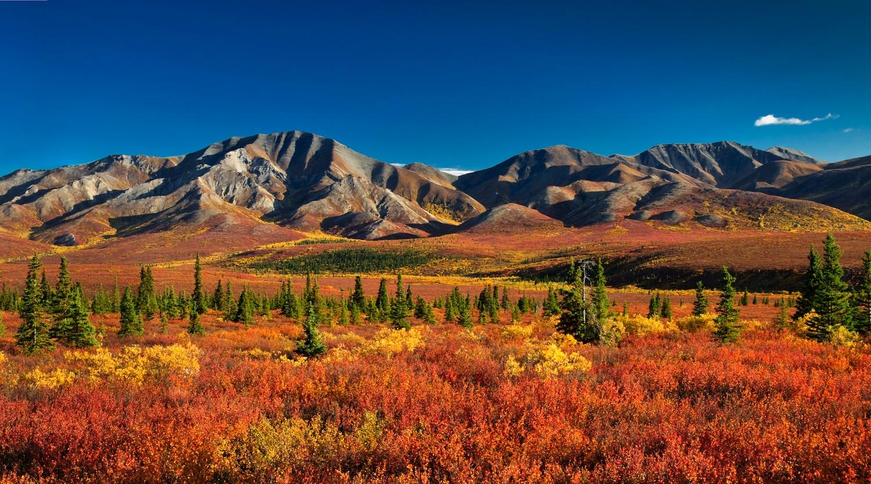 Denali_Alaska