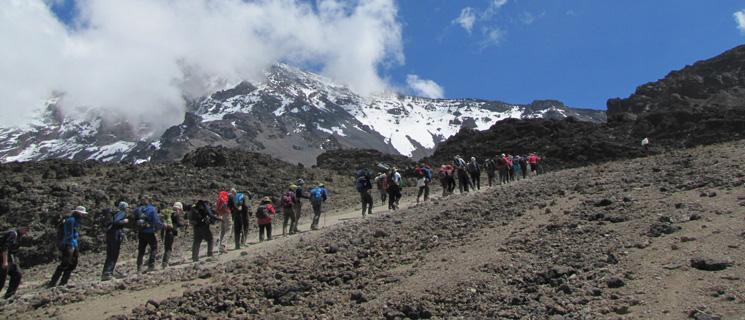 Kilimanjaro_large-3_tcm9-15848
