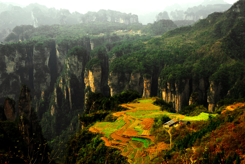 National-Park-of-Zhang-Jia-Jie-Hunan-China
