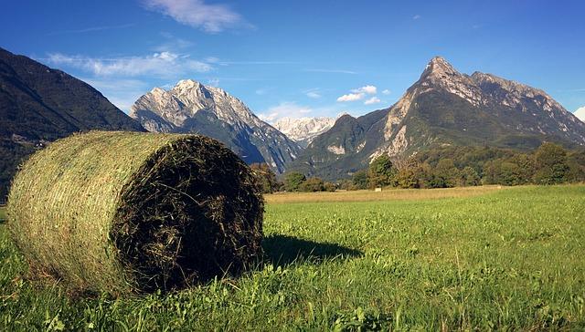 hay-bale-Slovenia