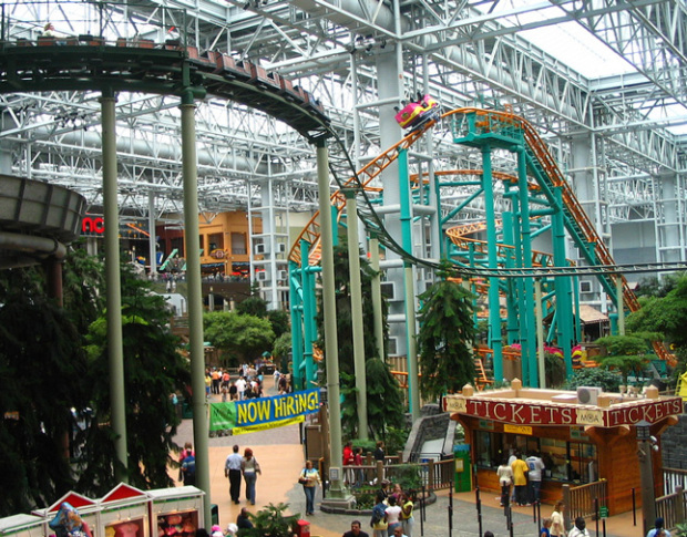 mall-of-america-treescape