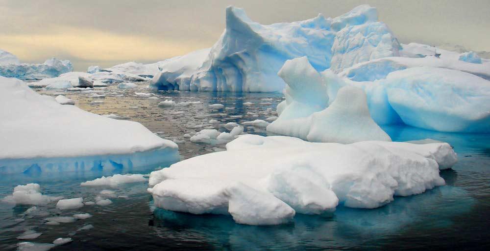 antarctica-tours