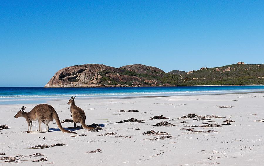 Kangaroo_Beach-perth-australia