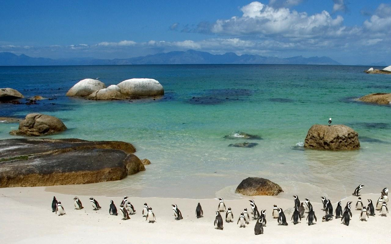photo-of-South-Africa-beach
