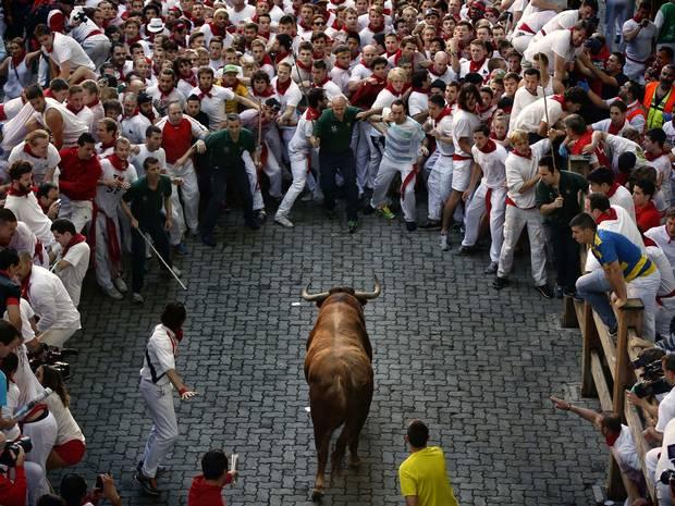 30-bull-AP