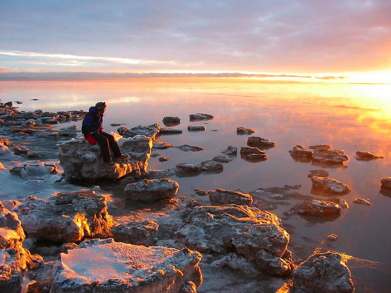 Kincaid-Park-Coastline_Paxson-Woelber