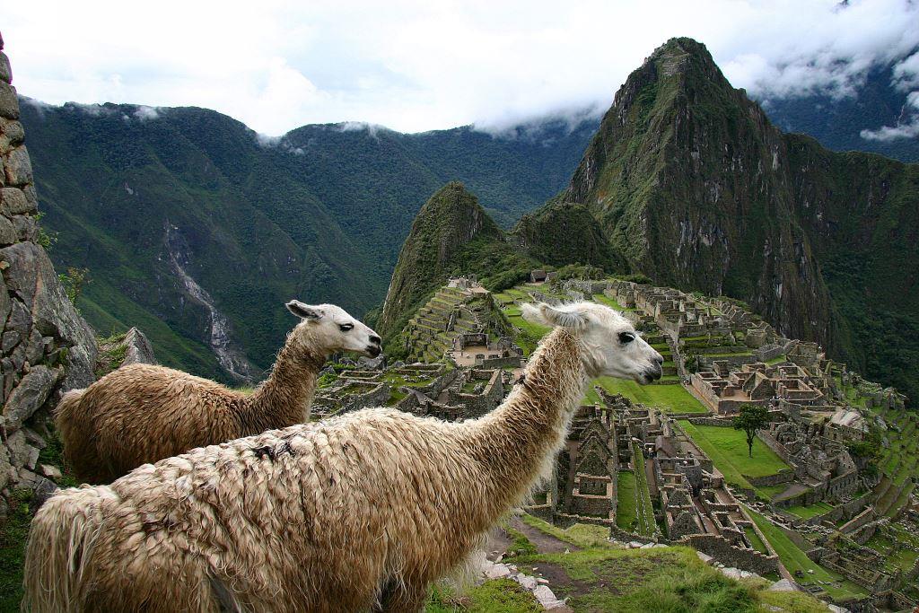 Peru (1)
